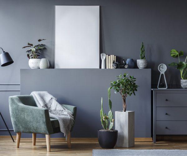 green-armchair-between-black-lamp-and-plants-in-gr-LRUVY39.jpg
